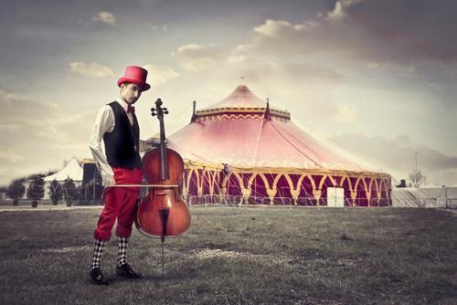 pin von edith nobel auf zirkus in 2020 mit bildern