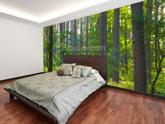 Forest sunrise Wall Mural | Wall murals, Photo wallpaper and Room set