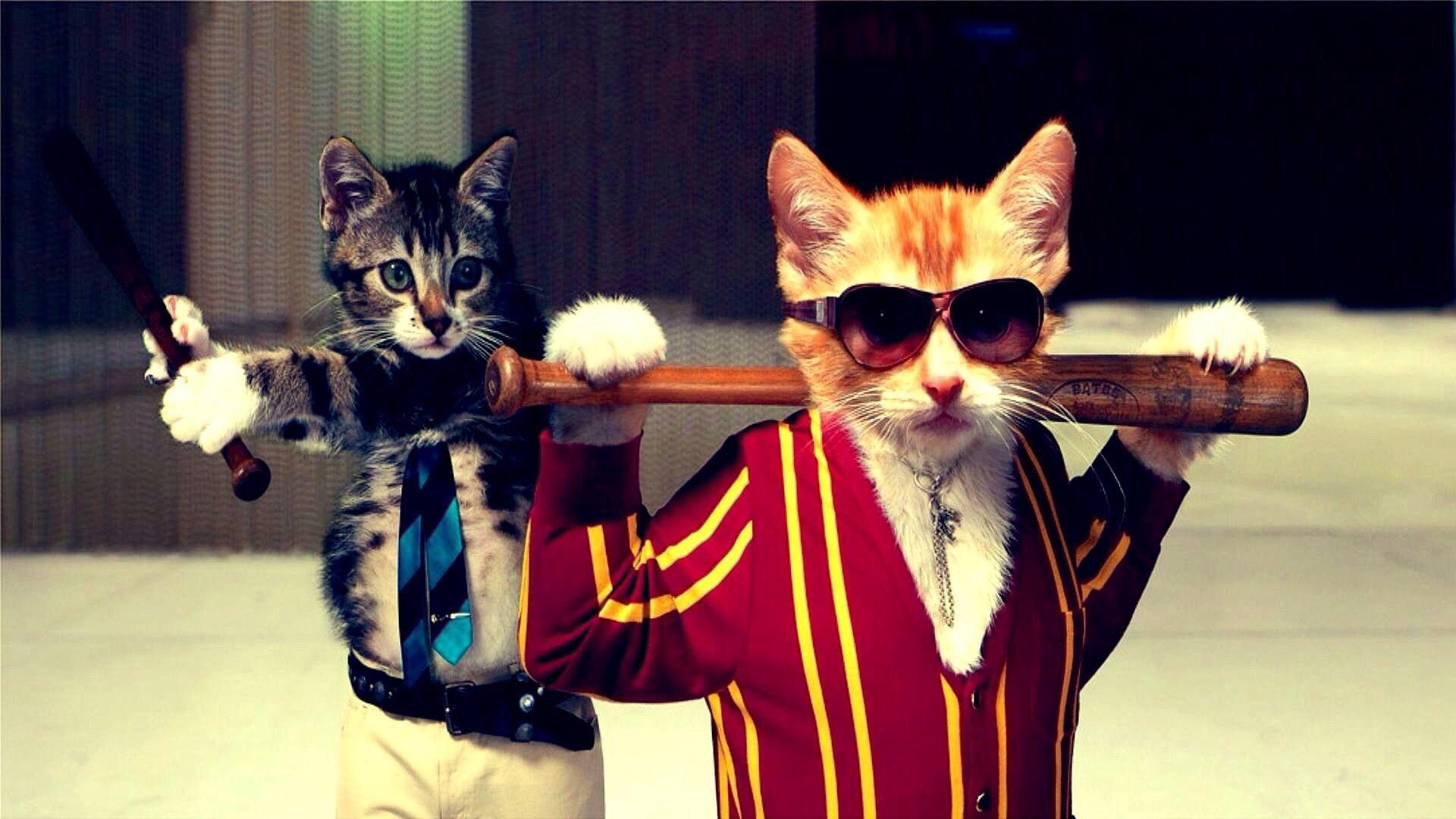 Cats wearing clothes \u0026 carrying Baseball Bats tough guys art