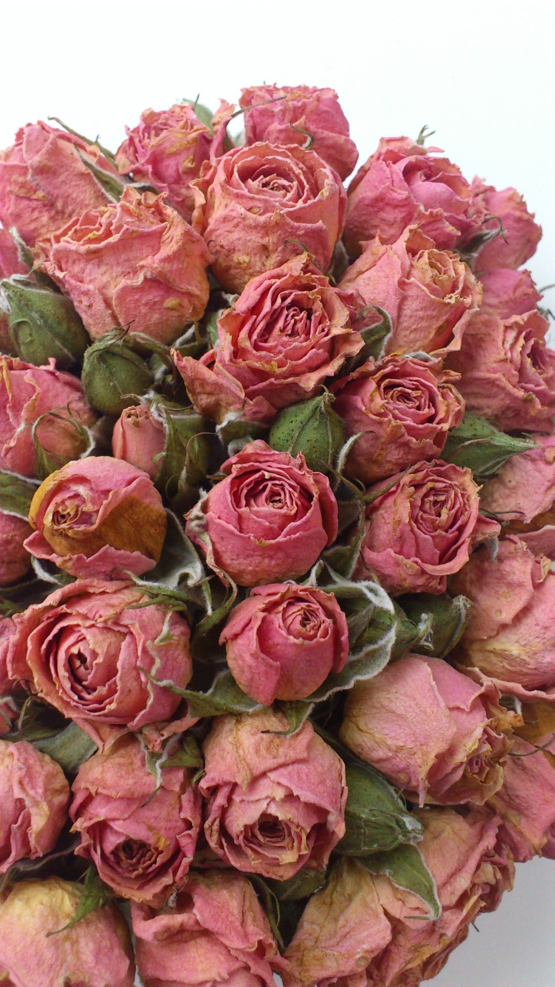 Wedding flowers - dried my sisters flowers and now re-arranged into ...