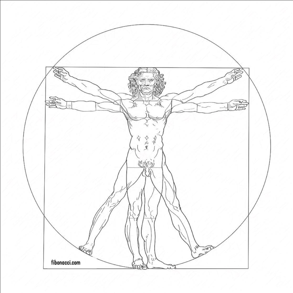 Vitruvian Man Vitruvian Man Leonardo Da Vinci Tattoos With Meaning