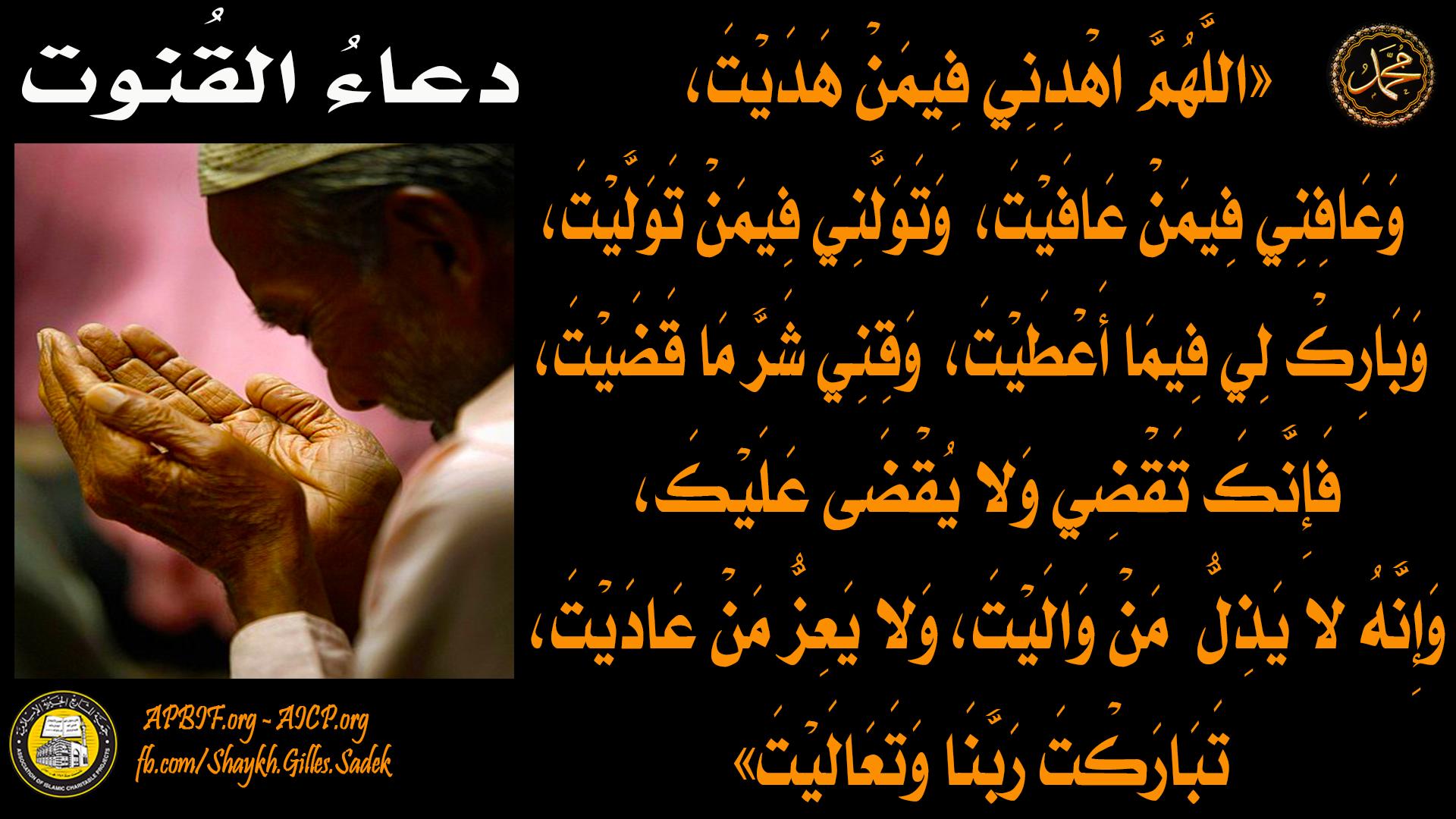 Shaykh Gilles Sadek Movie Posters Movies