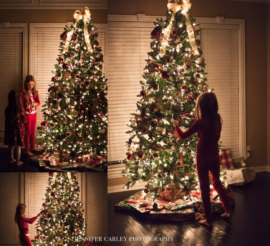 Flower mound family photographer photos by the christmas