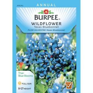 Bur Texas Bluebonnet Wildflower Seed 44784 At The Home Depot