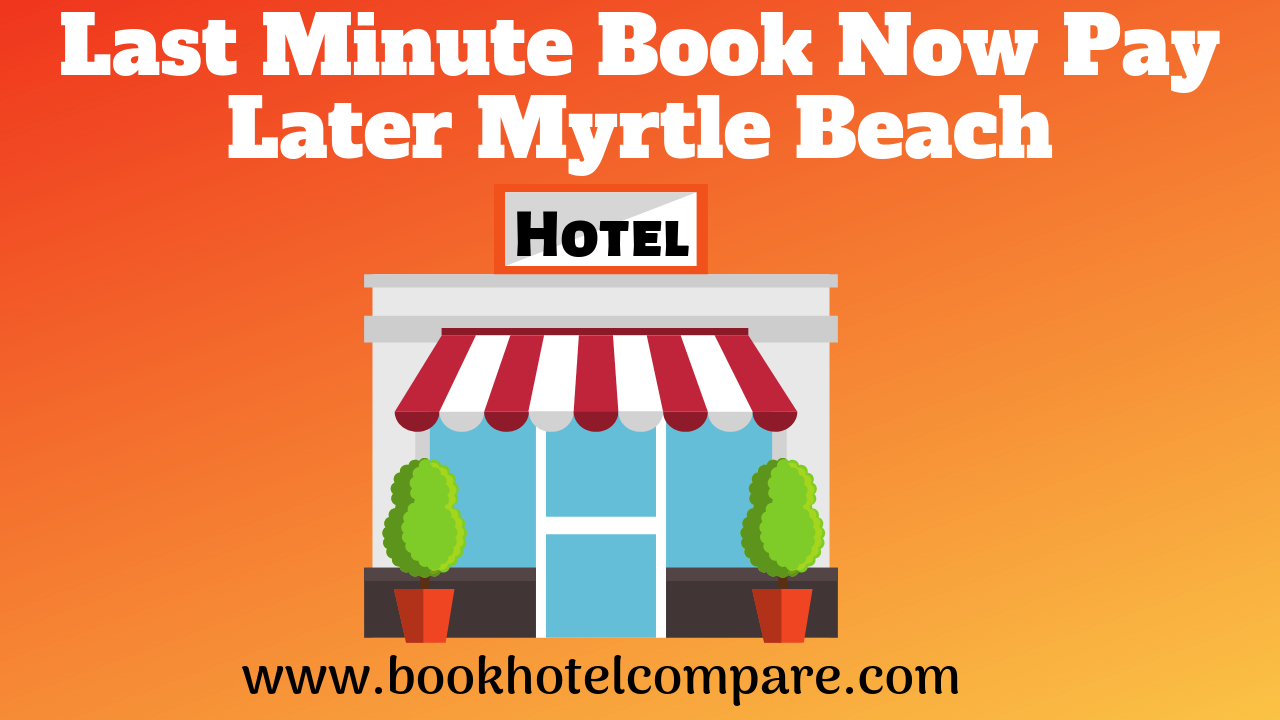 Nippy Turtle Car Rental Cyprus Book Now And Save Best Deals Furniture Deals Beach Hotels