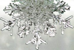 Snowflake unit study- a perfect educational activity for a cold, winter day! This page includes lots of information, videos, snowflake images, and links to snowflake crafts and snowflake foods.
