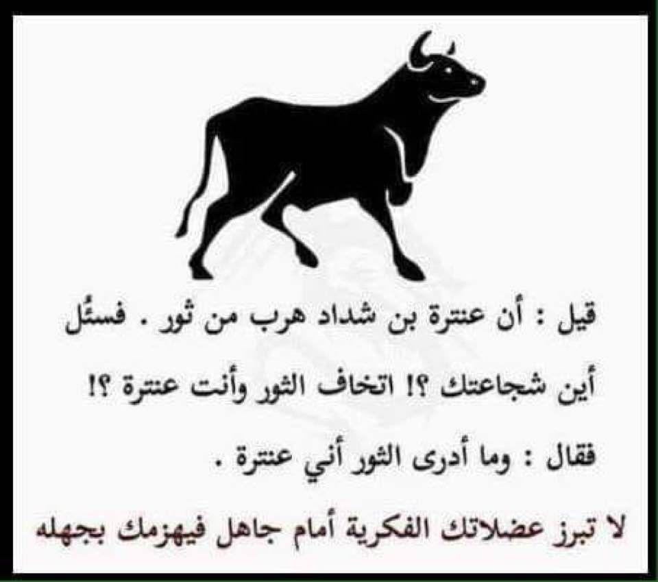 هل تعلم معلومات معلومة عنترة قصة عبرة Wisdom Quotes Life Funny Arabic Quotes Book Quotes