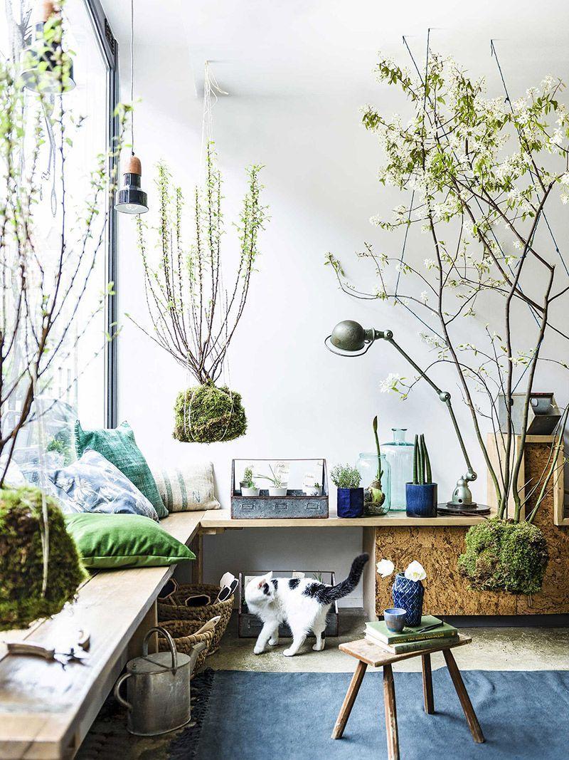 decora o scenes pinterest deco jardins et maison. Black Bedroom Furniture Sets. Home Design Ideas