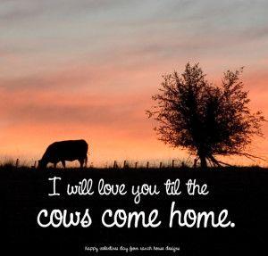 Cow Valentine Livestock Valentines