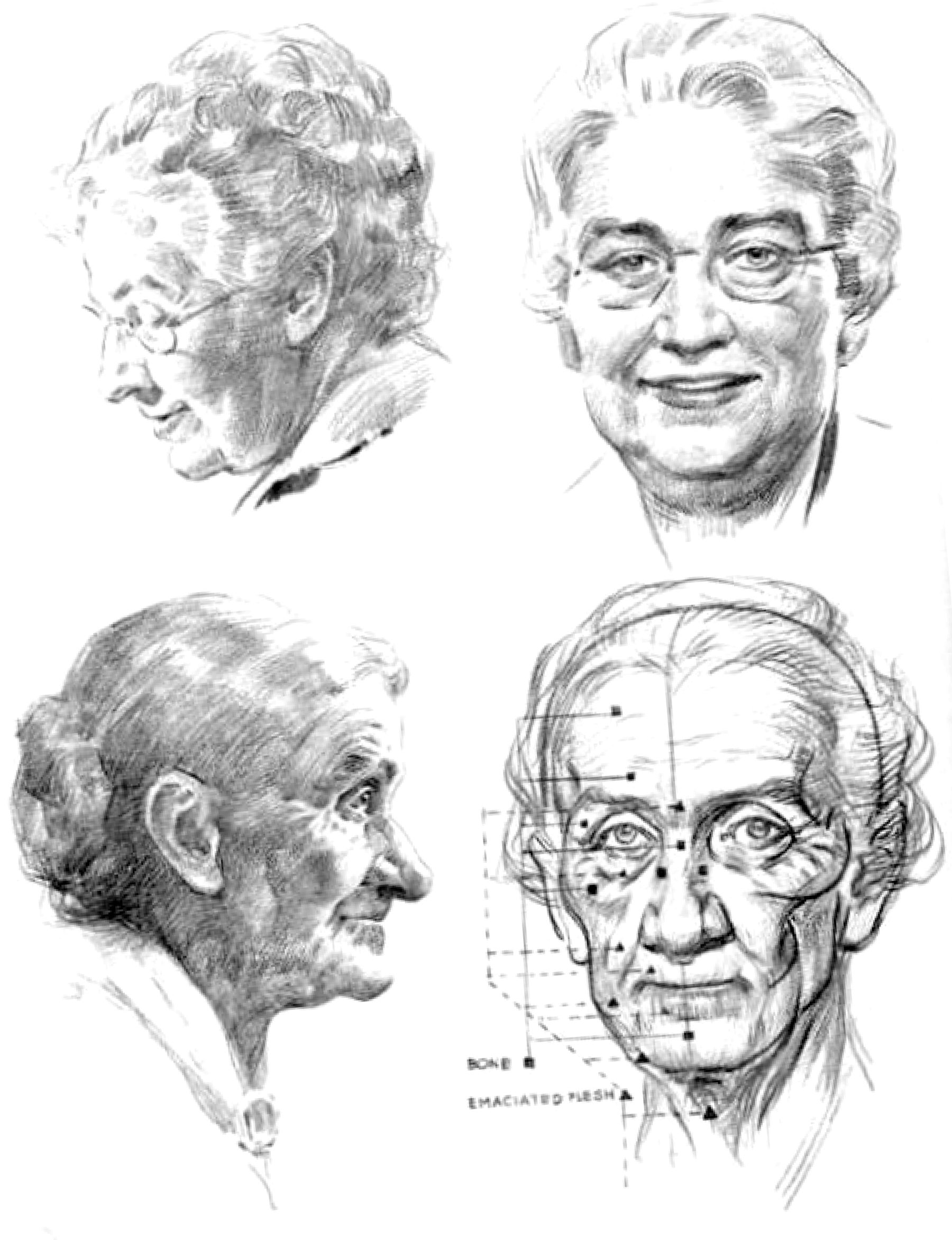 How to draw a portrait in stages with a pencil