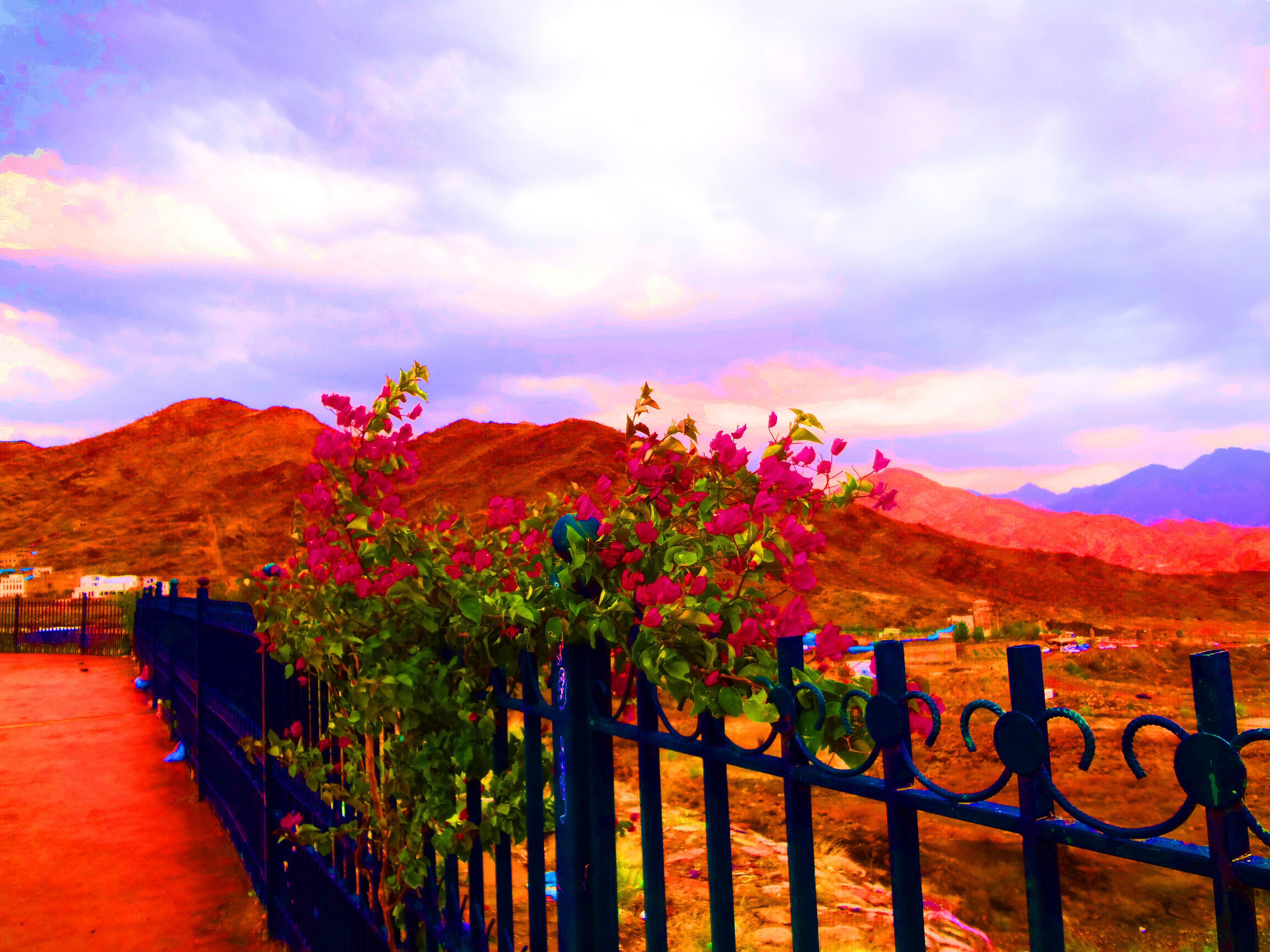 As Sarawat Mountains Al Hada Road Taif Taif Saudi Arabia Natural Landmarks