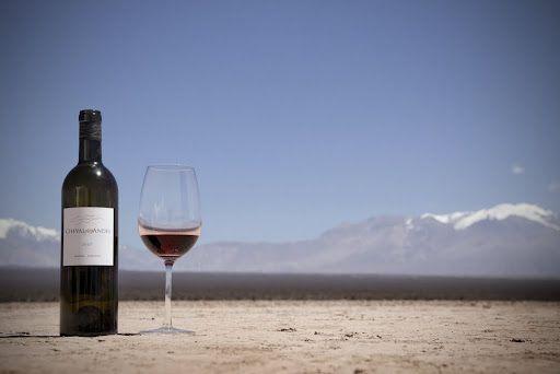 Al pie de Los Andes. Mendoza. Argentina