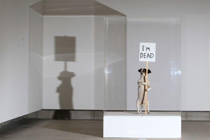 si vas a Londres podrás en la Hayward Gallery encontrarás esta obra de David Shrigley, I'm Dead.
