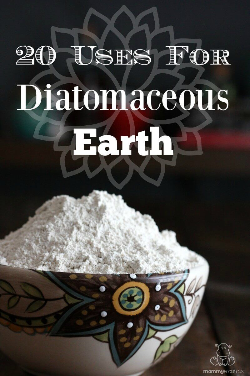 20 Uses For Diatomaceous Earth Natural cures, Health
