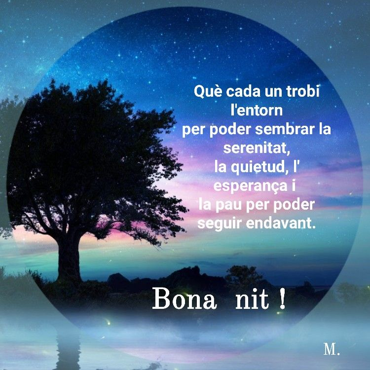 Pin De Maria Beatriz En Bona Nit Buenas Noches En Catalan Carteles De Buenos Dias Frases Bonitas De Buenos Días
