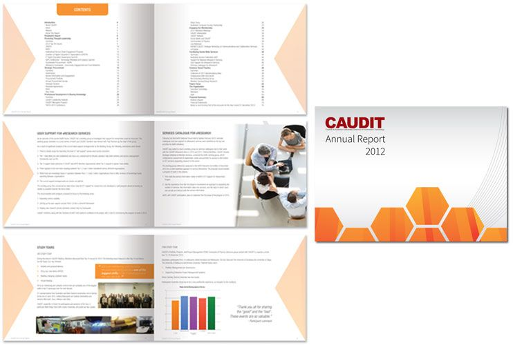Caudit Annual Report  Designed By Shona Creative Www