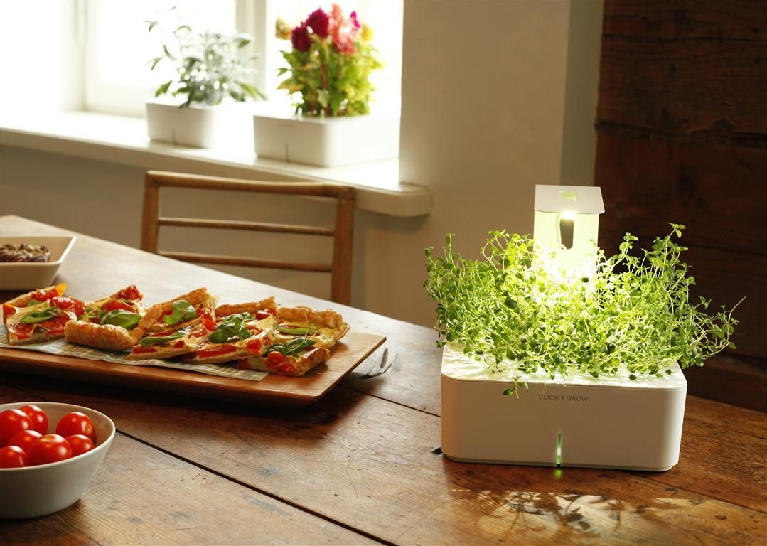 Click and Grow grows a Grow Light for all | Gardens, Lights and Grow ...