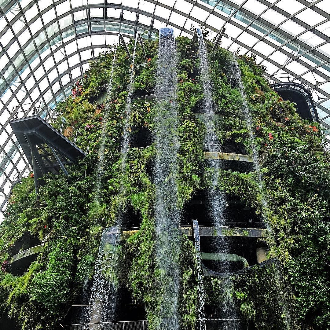 Indoor Waterfalls At The Cloud Forest In Marina Bay Garden