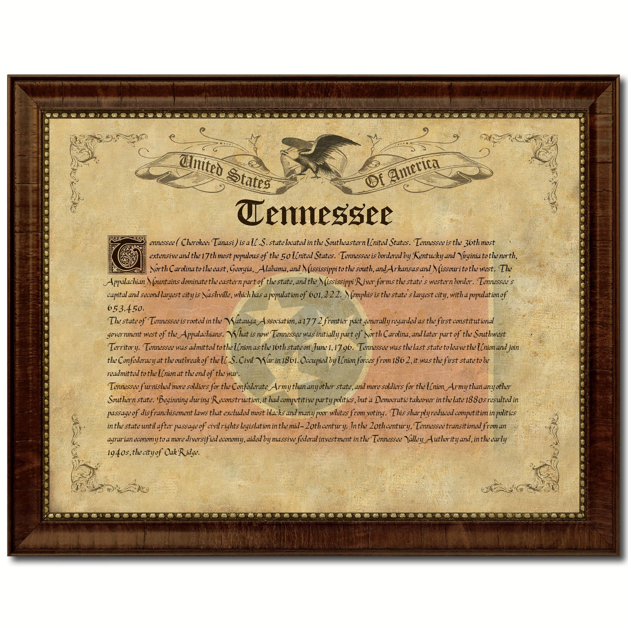 Tennessee vintage history flag canvas print picture frame gift