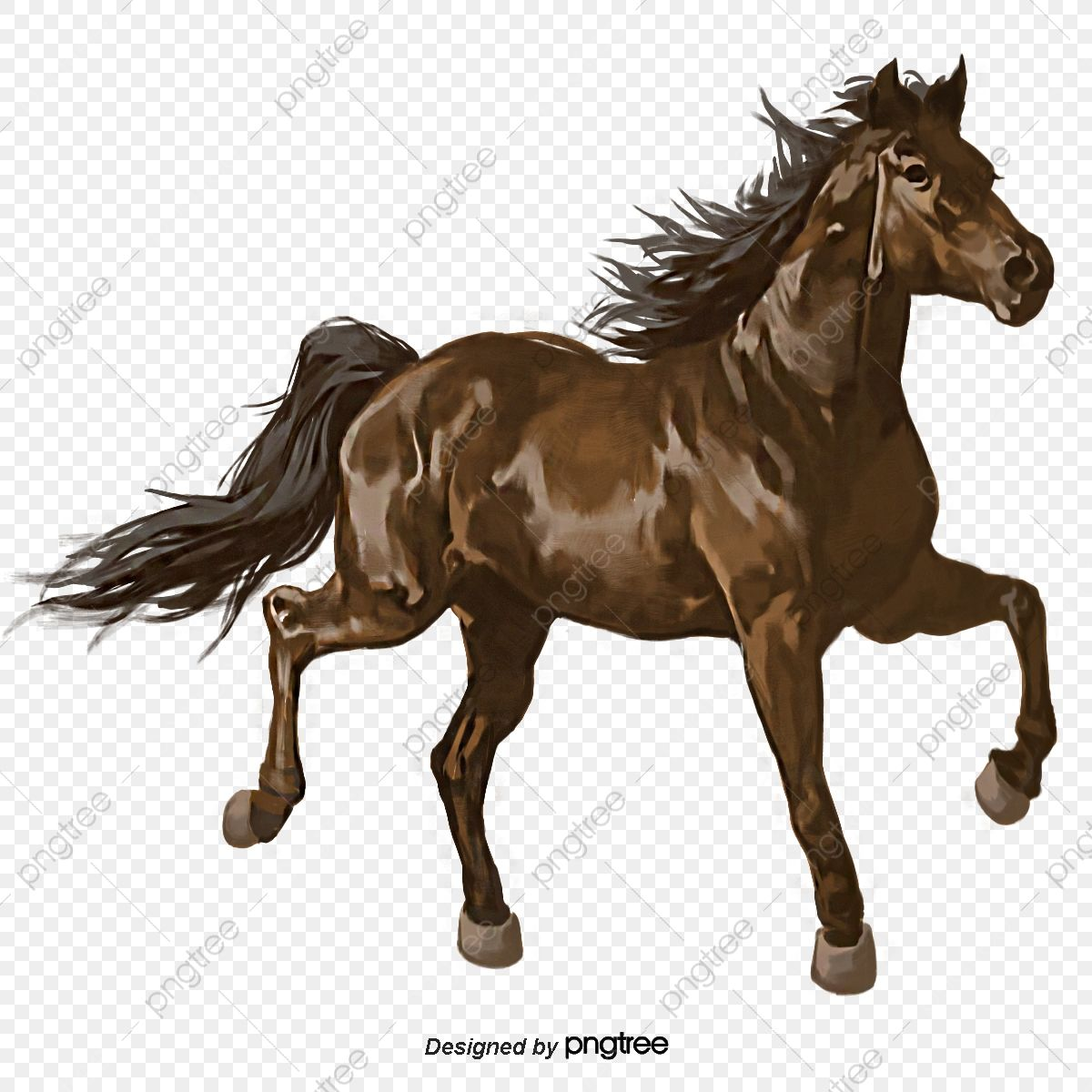 Hand Painted Elements Of Mercedes Benz Horse Riding Horse Animal Running Png Transparent Clipart Image And Psd File For Free Download Horse Background Horses Horse Posters