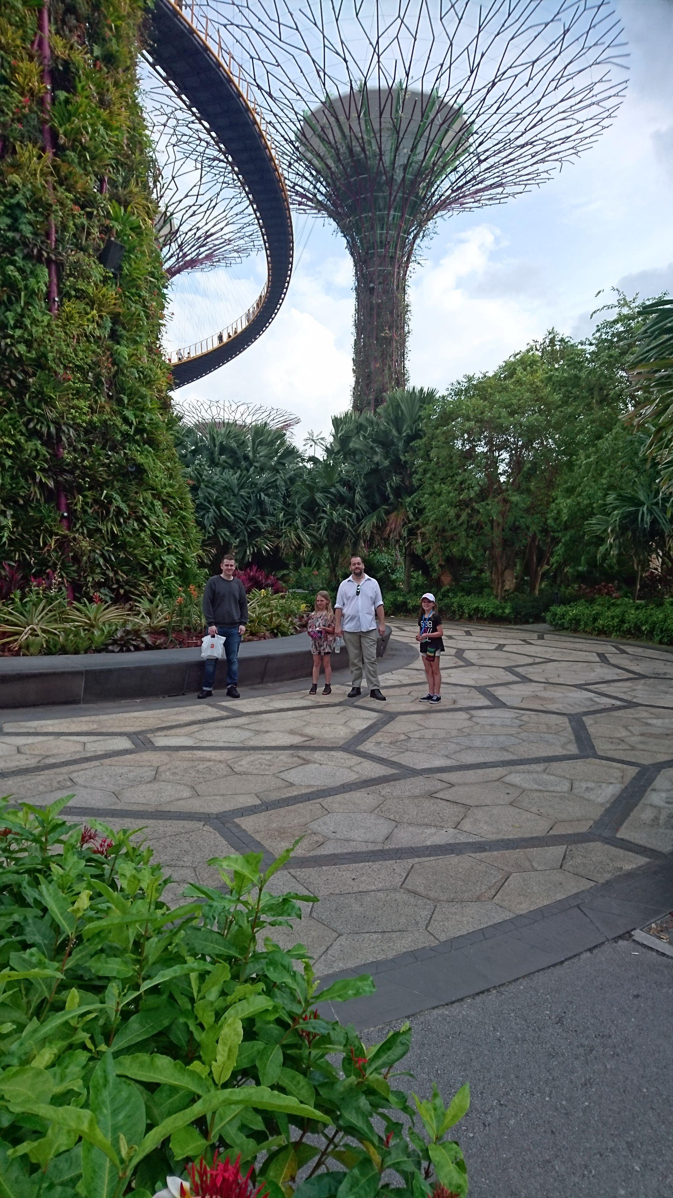 Garden of the Bay, Singapore Gröna väggar, Grön och Väggar