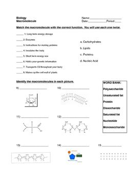 Macromolecule Worksheet Map worksheets, Teaching biology