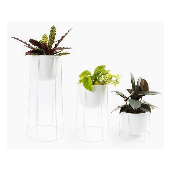 Menu Wire Planter in White ❤ liked on Polyvore featuring home ...