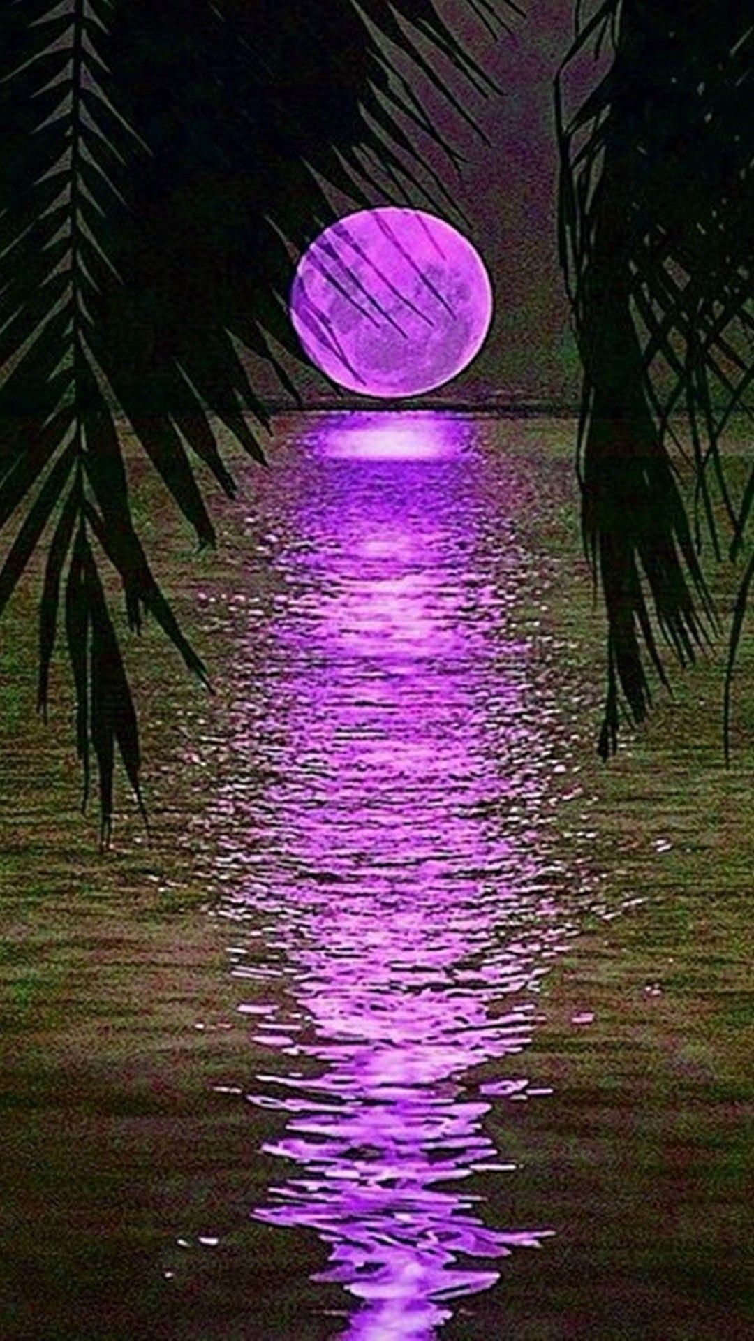 Plams purple moon moon stars ocean sky clouds - Purple moon wallpaper ...