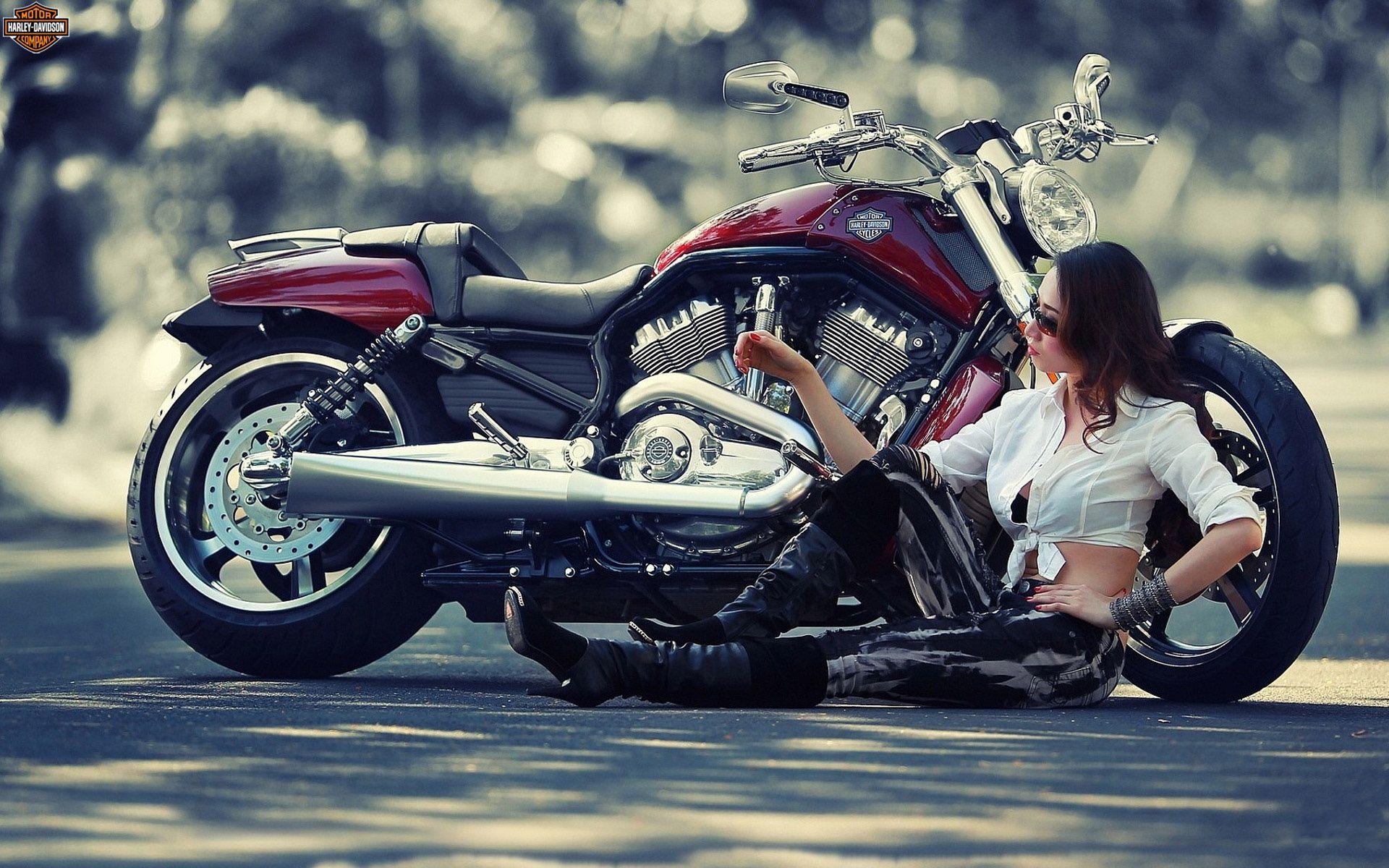 Harley Davidson Best Wallpapers Harley Davidson Wallpaper Harley Davidson Motorcycle Wallpaper