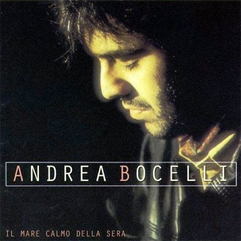 Pin By Susan E On Entertainment Andrea Bocelli Music Book Album