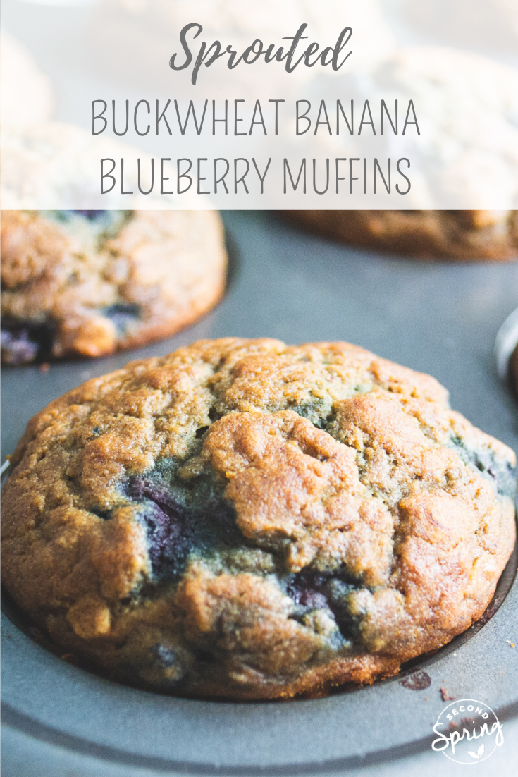 Sprouted Buckwheat Banana Blueberry Muffins