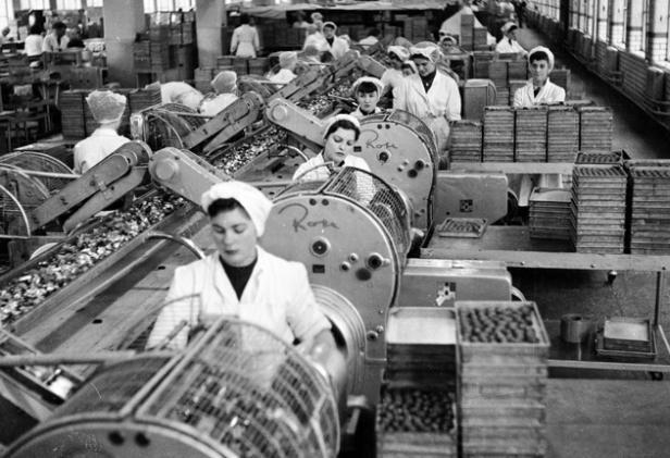 1950s UK - Cadburys, Bourneville by Polly Cotton, via ...