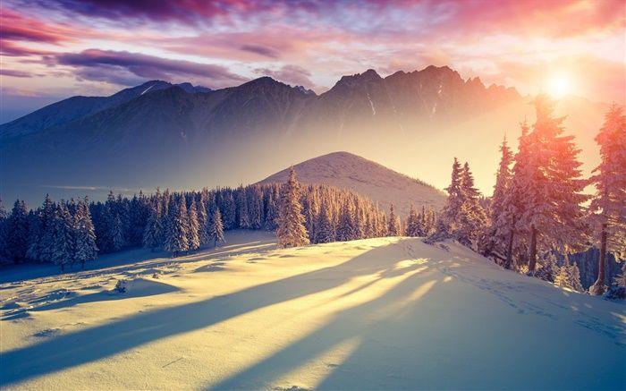 Hiver Neige Froid Montagnes Arbres L Epinette Le Ciel Le Lever Du Soleil Les Ombres Hd Fonds D Paysage Froid Lever De Soleil Paysage Coucher De Soleil