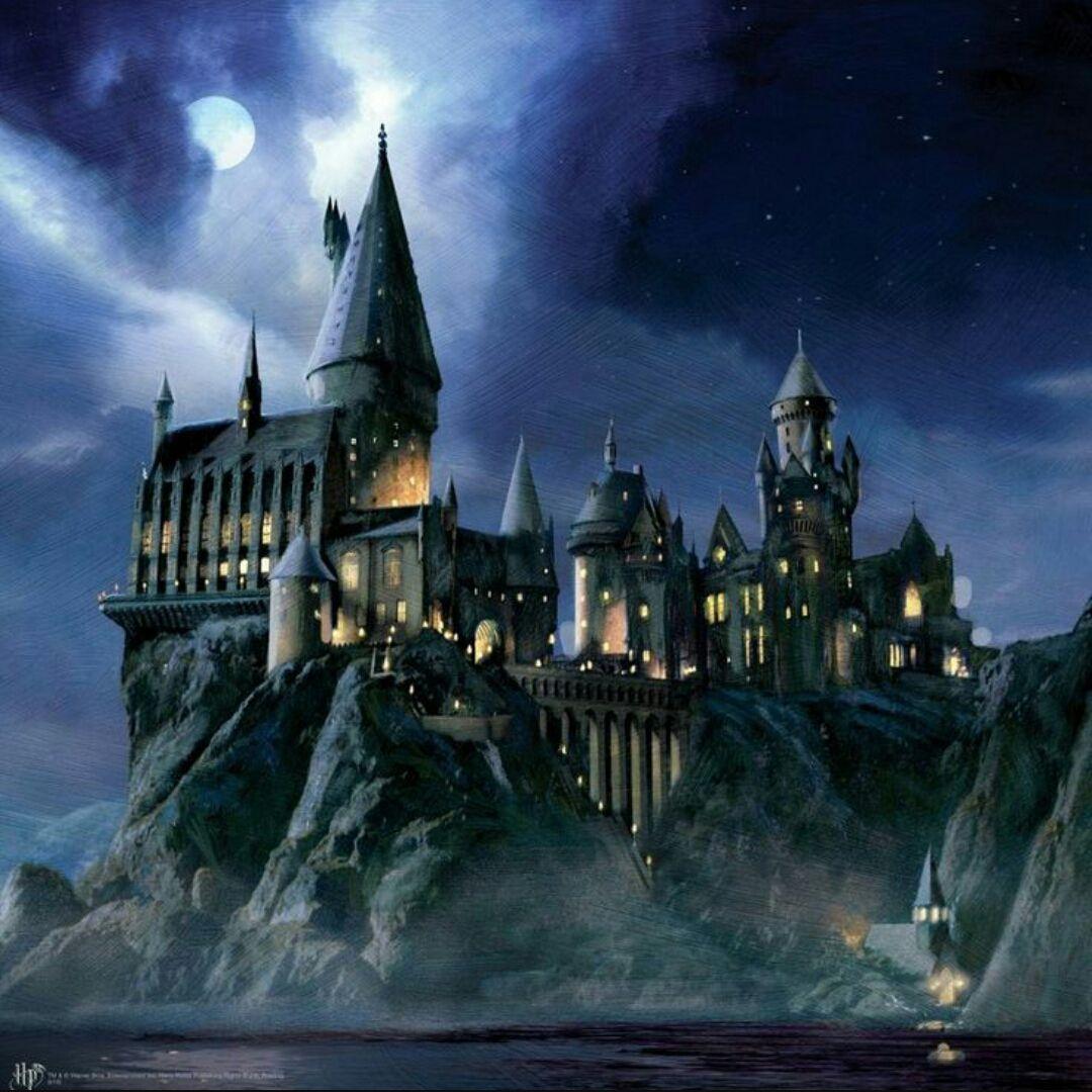 L Angolo Dei Potterhead Zweinstein Harry Potter Tekeningen Pentekeningen