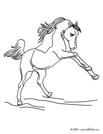 Wild Horse Coloring Page Cute And Amazing Farm Animals For Kids More