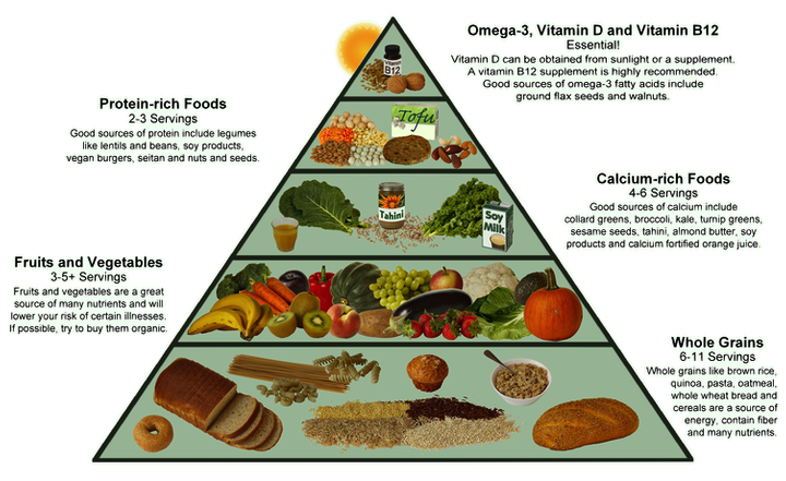 Major Nutrients and Their Sources >>> To view further for this ...