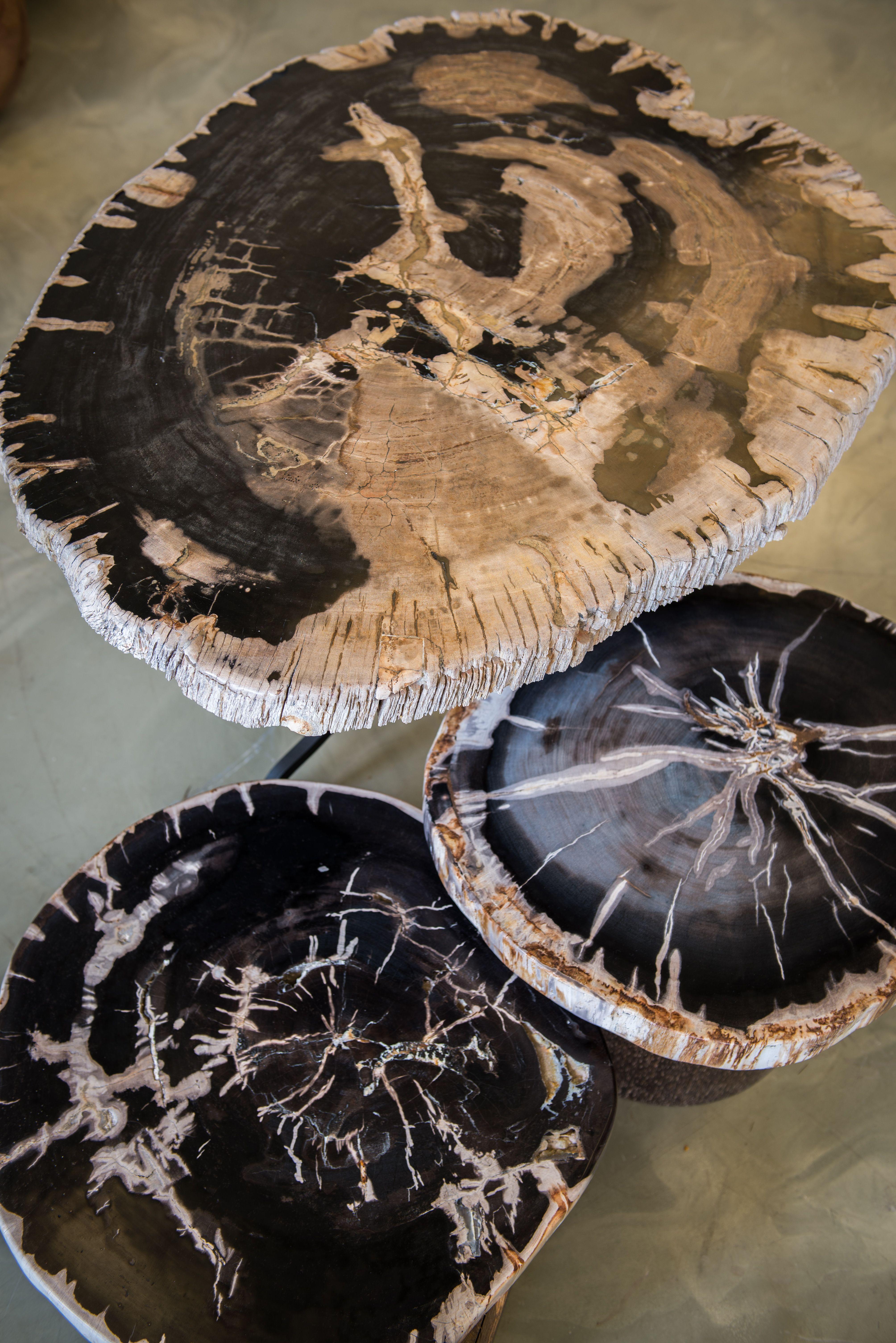 Petrified wood tables Indosign petrified petrifiedwood table