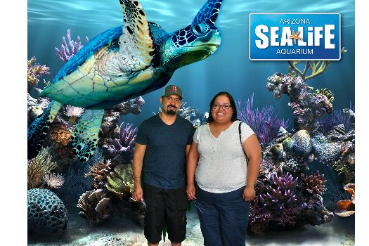 Check out my photo from SEA LIFE Arizona!