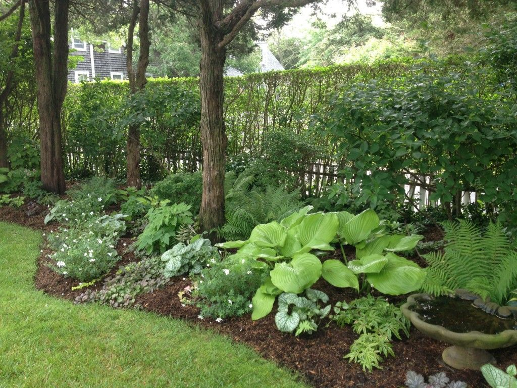 Perennial garden photo gallery of the relaxing shade for Garden design ideas zone 5