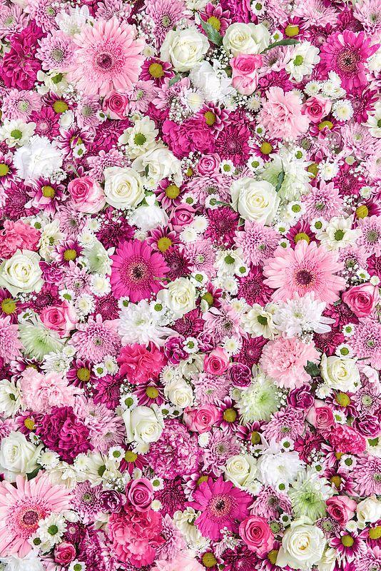 Wallpaper For Walls Flowers