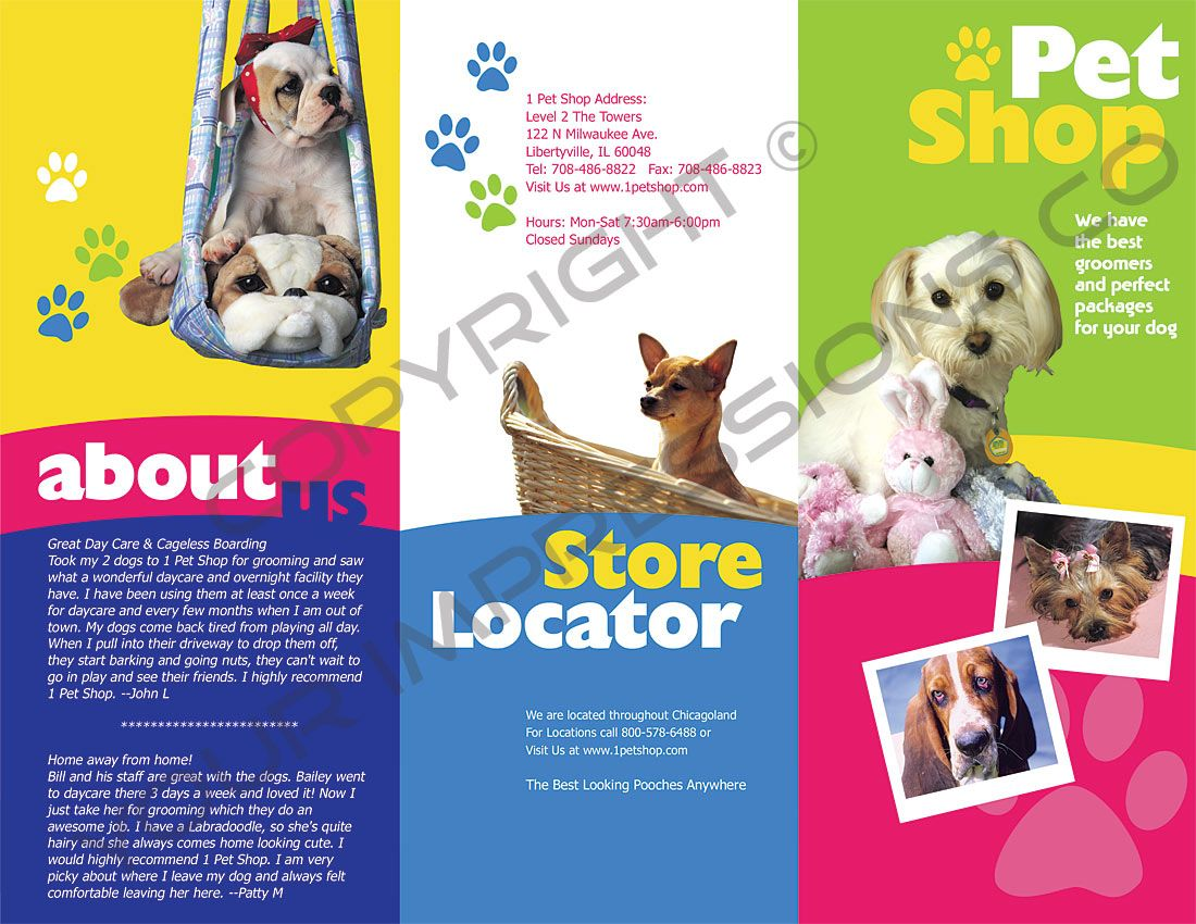 Folder Pet Shop Dog Branding Brochure