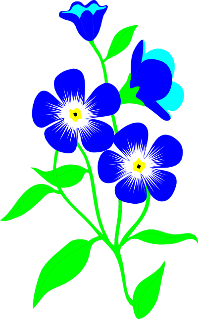 clip art forget me not flower - photo #29