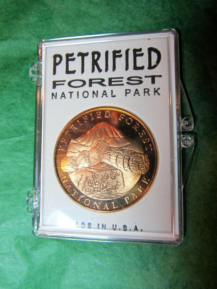 Petrified Forest National Park Walking Hiking Stick Medallion Arizona