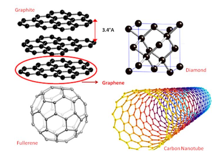 Different allotropes of carbon viz Graphite, Diamond