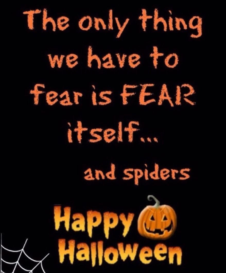 2019 year lifestyle- Halloween Happy quotes funny pictures