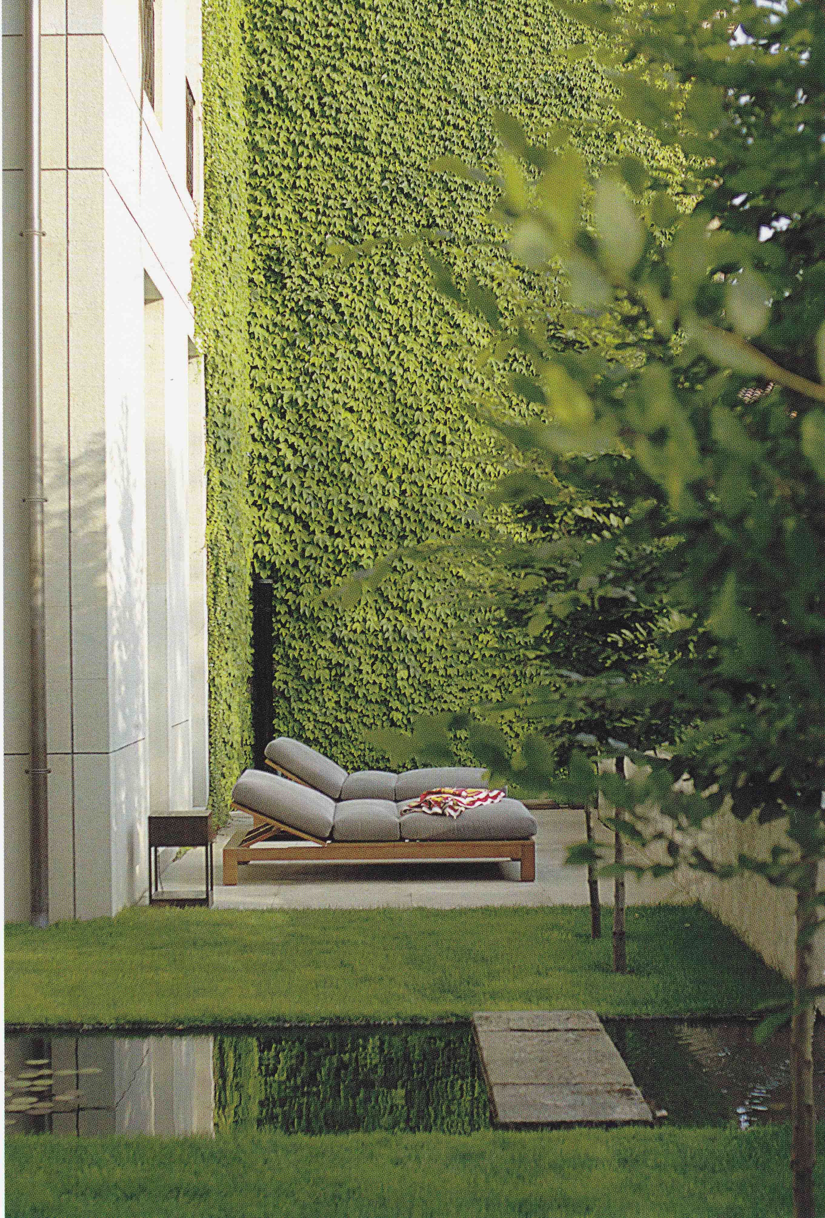 i would like to try and achieve this u00273 story u0027 ivy green wall in