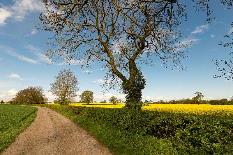 Pinwall, Warwickshire
