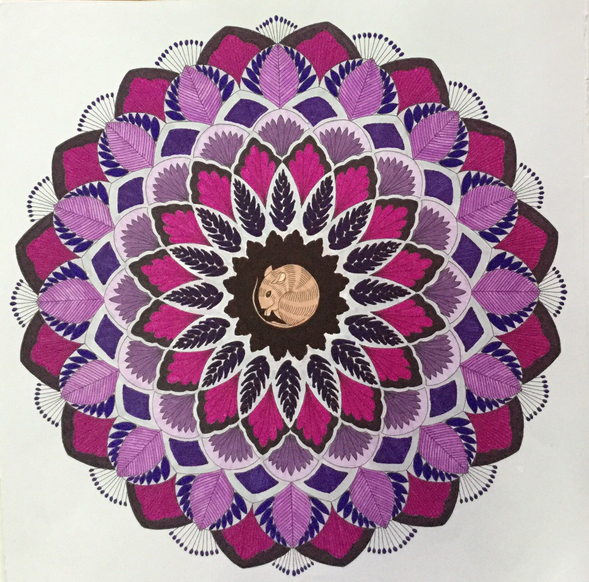 Colouring Millie Marotta Mandala Mouse Souris