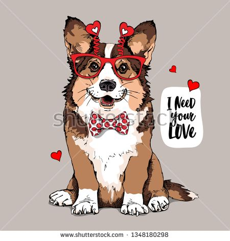 Download Stock Vector: Welsh Corgi dog in a fun glasses with a red ...