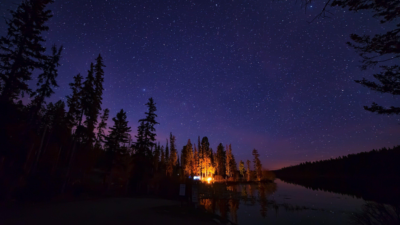Wild Sleeping Bear Ceramic Mug Camping photography, Lake